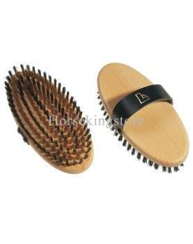 Leistner body brush with brass and PVC bristles