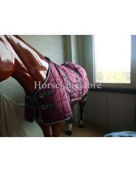 Box Turnout Galop Burgundy size 155 cm